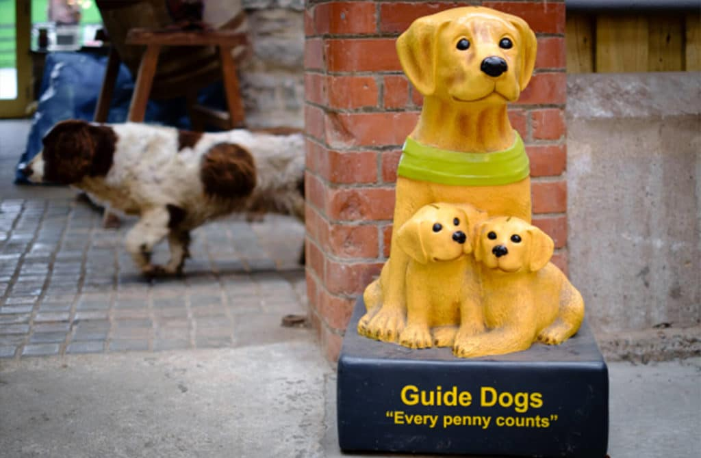 Guide Dogs donation box