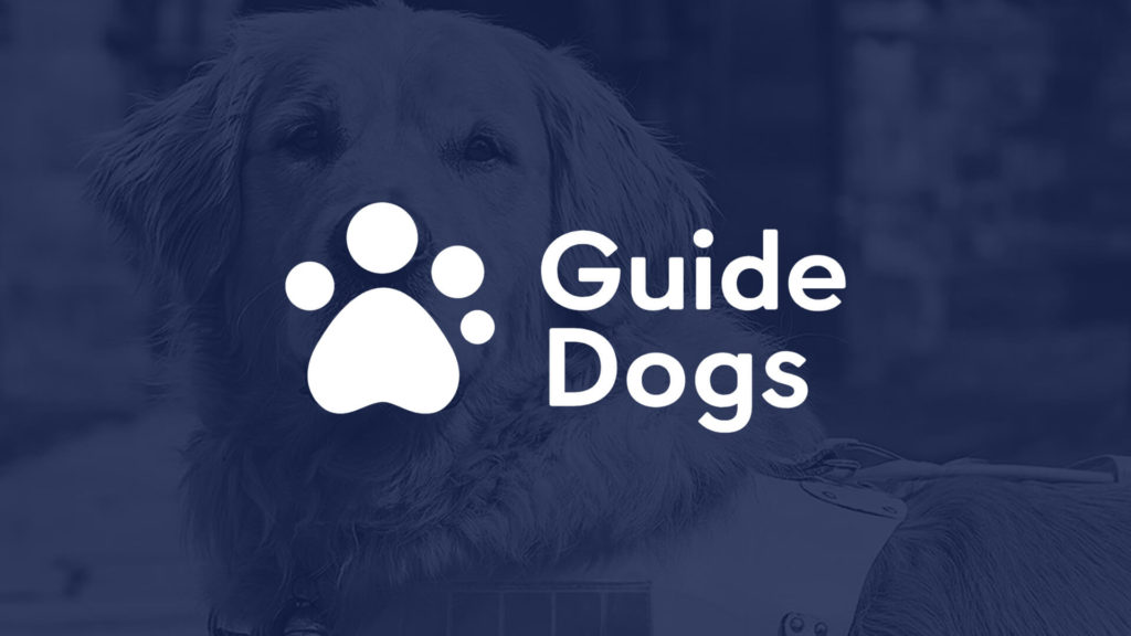 Guide Dogs featured image